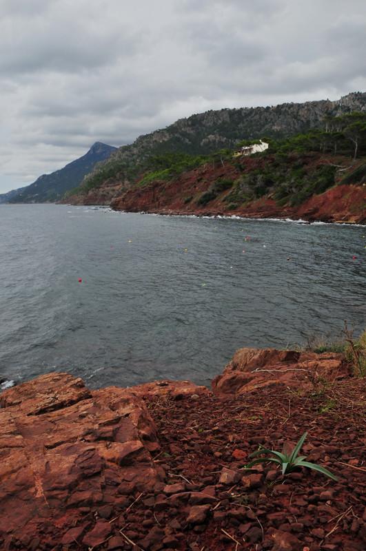 Port des Canonge II