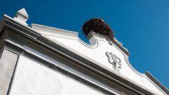 """Portogallo Faro """"nido di cicogna"""""""
