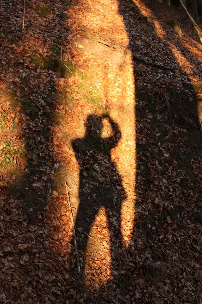 Porträt meines Schattens