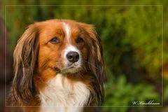 Portrait-Charly