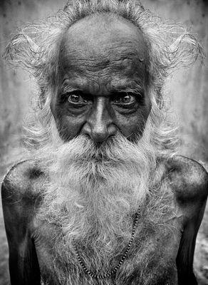 portrait d un vieux patriarche Indian