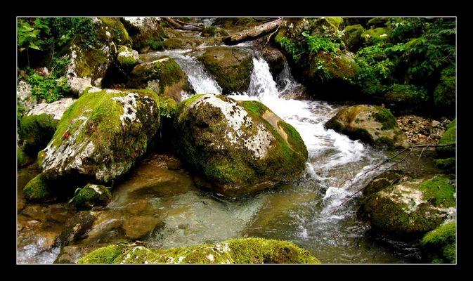 Portrait de rivière