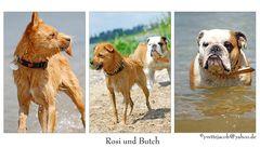 Portrait Rosi und Butch