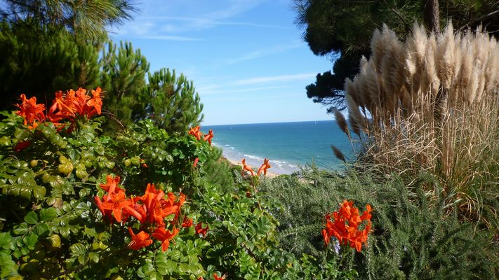 Portugal - Felsalgarve, Ort Olhos d'Água