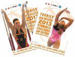 Poster zum Turnier der Meister 2013