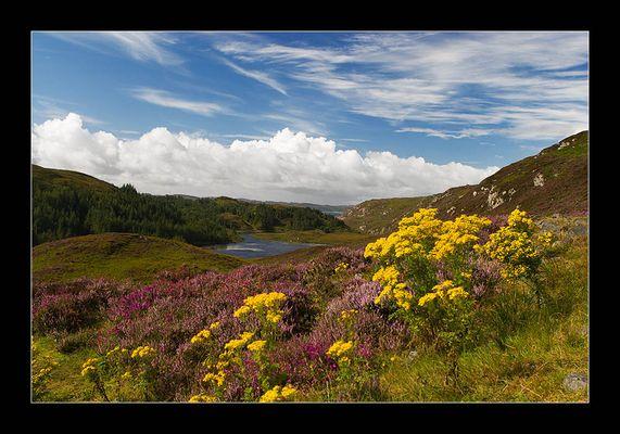 Postkarte aus Schottland