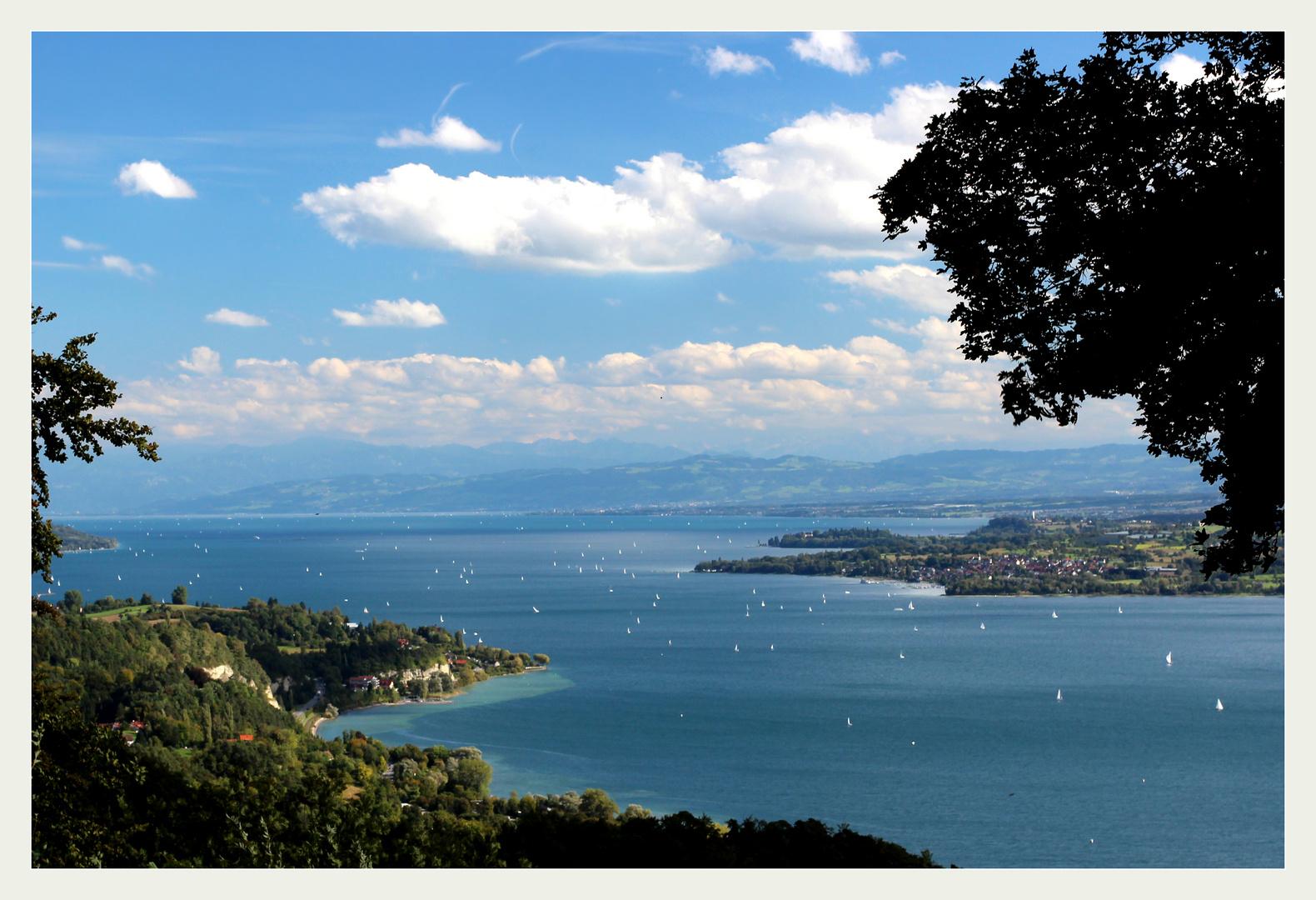 Postkarte vom Bodensee...