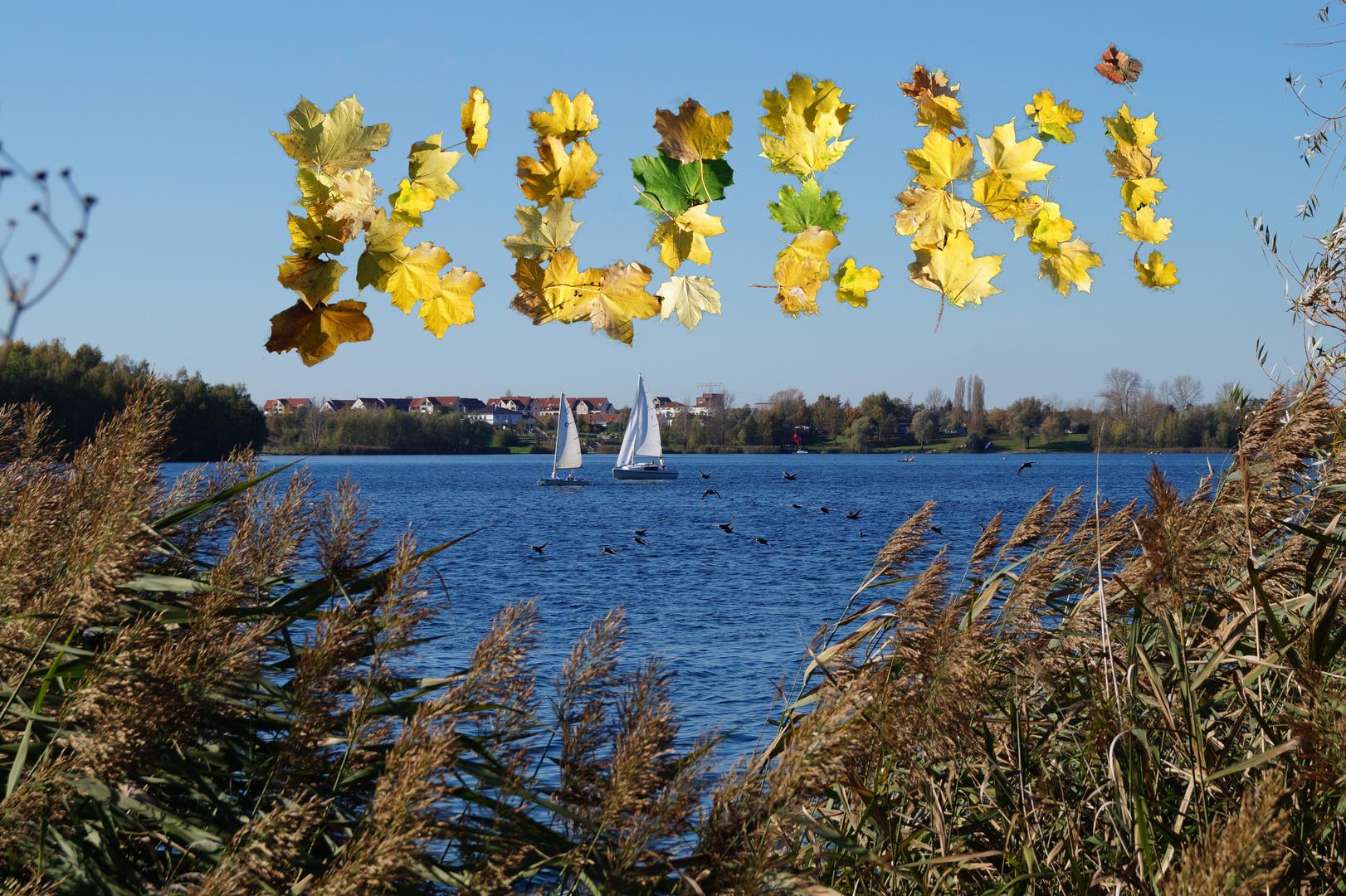 Postkarte vom Kulkwitzer See