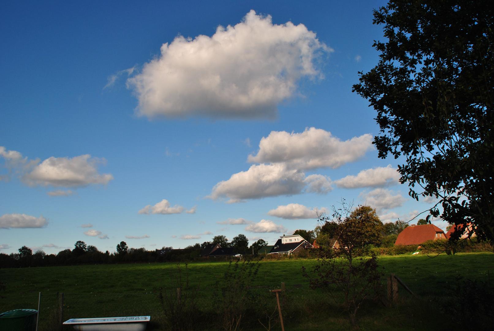 Postkartenhimmel über meinem Garten