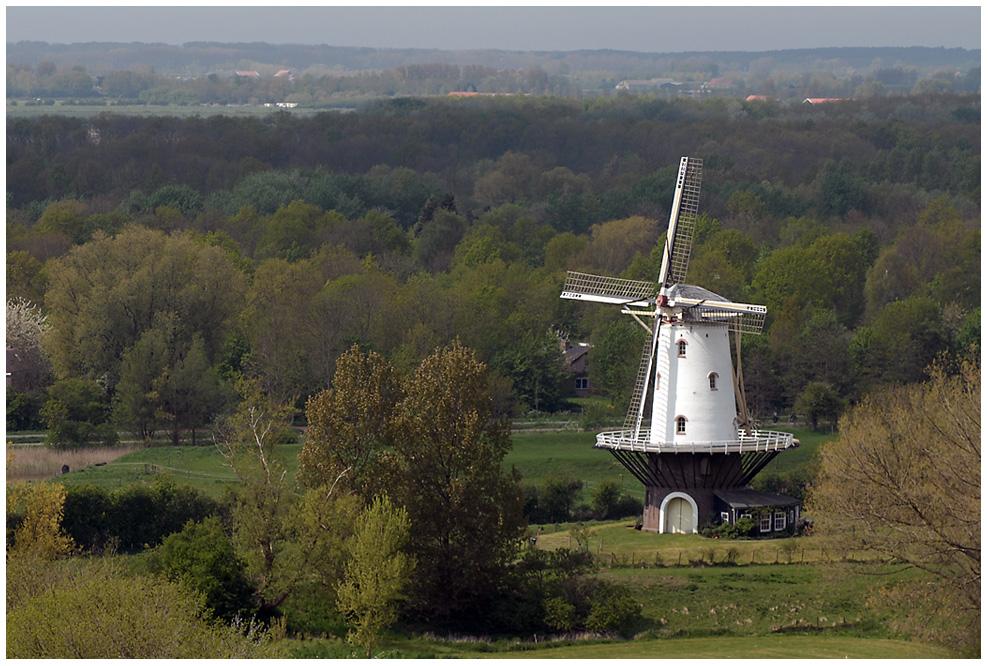 Postkartenidylle: Frühling in Holland