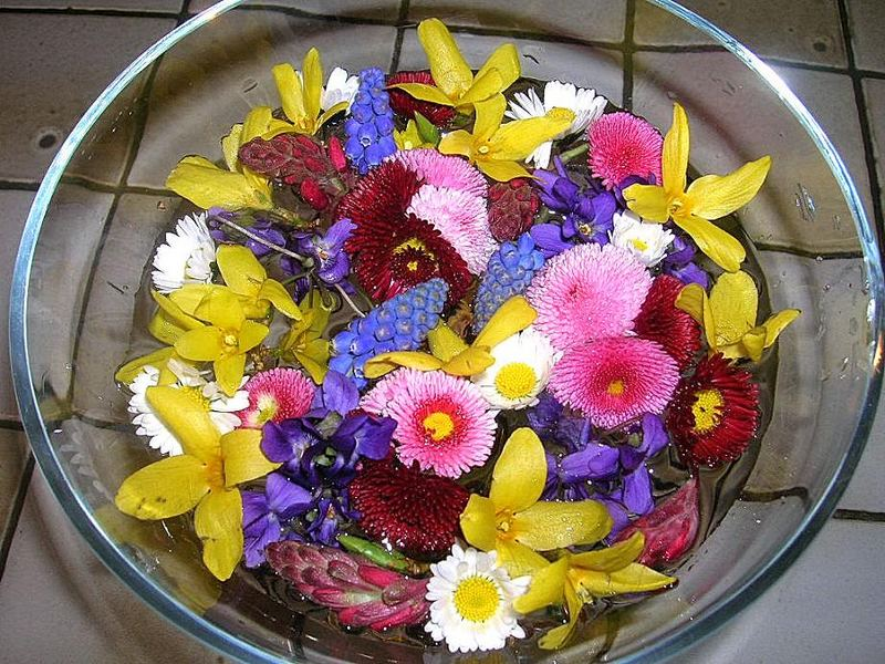 Pot-pourri avec les premières fleurs du jardin