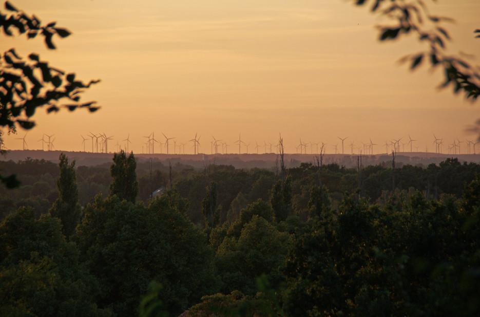 Potsdam, Heiliger See – 05.08.08 – 14