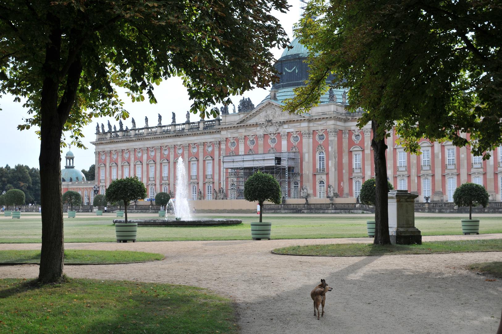Potsdam Sanssouci bei Berlin