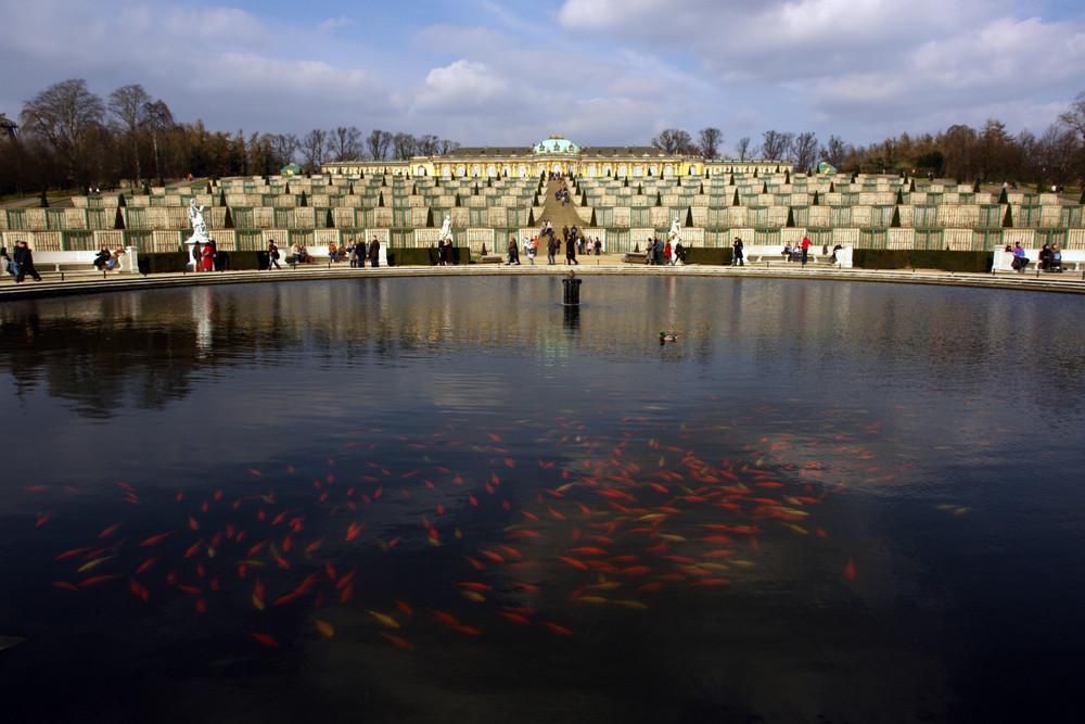 Potsdam Sanssouci - Park Sanssouci