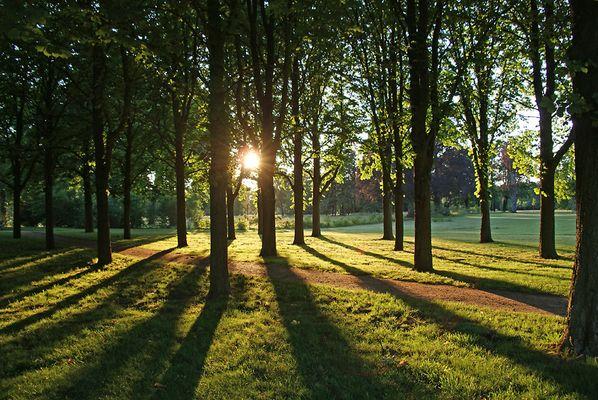 Potsdam und Umgebung, 29.05.09 – 18