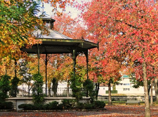 Pour jouer un prélude à l'automne.....