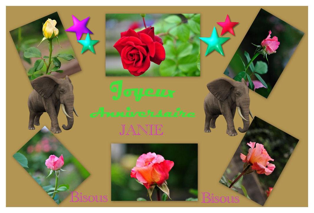 Pour toi Janie................