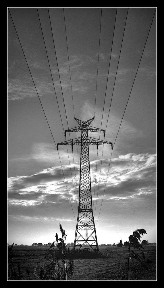 > power of the grid