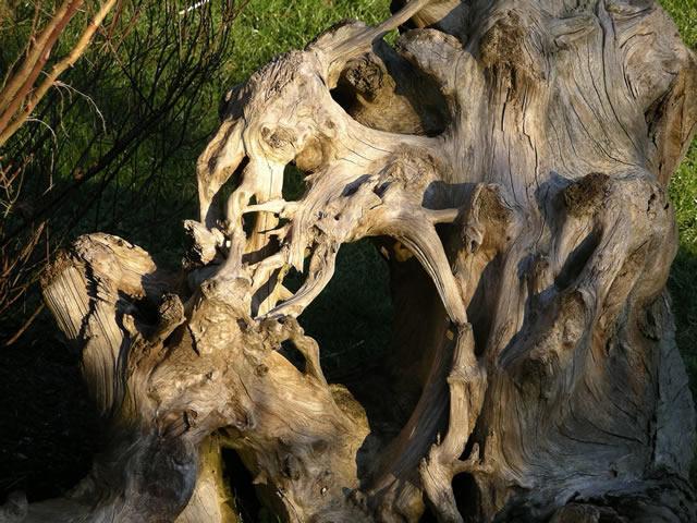power of wood! ;)