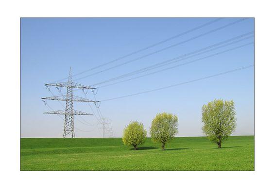 Powerlines #1