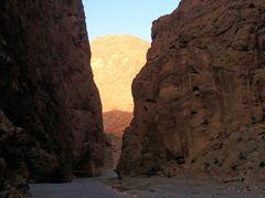 PP Schlucht Todra sunrise maroc-24