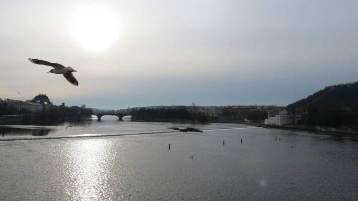 Praga - Fiume Moldava dal Ponte Carlo