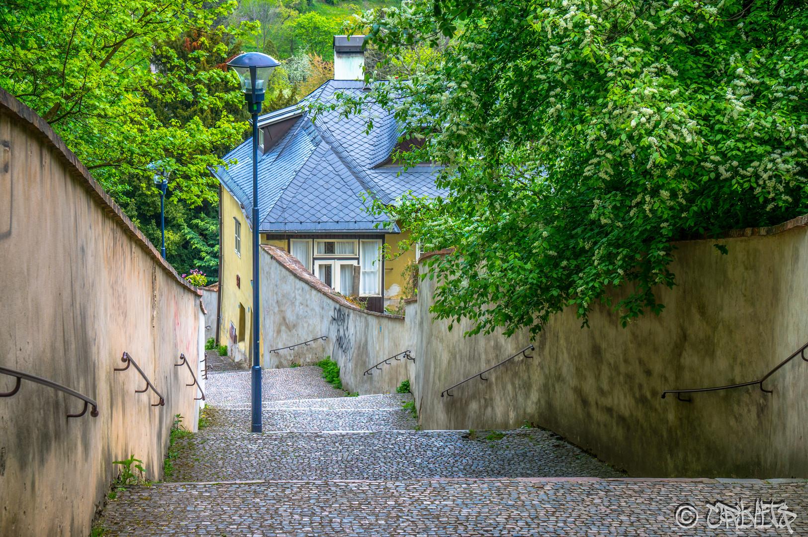 Prague VIII