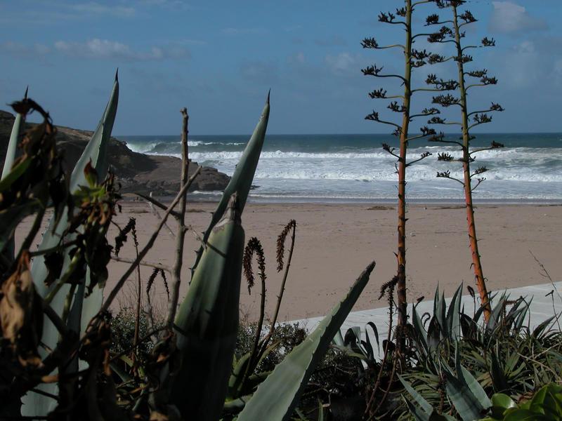 Praia Grande- PT