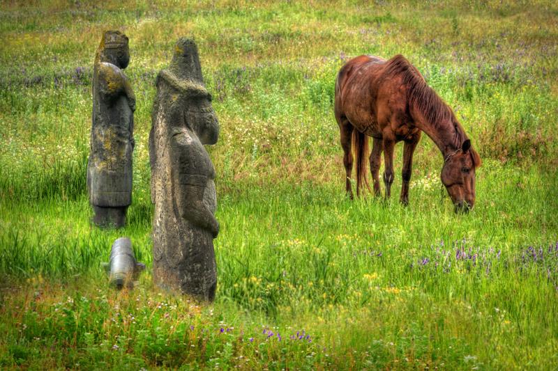 Prairie en Ukraine