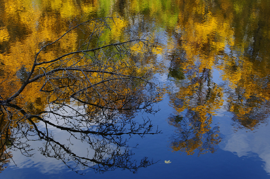 Prater im Herbst