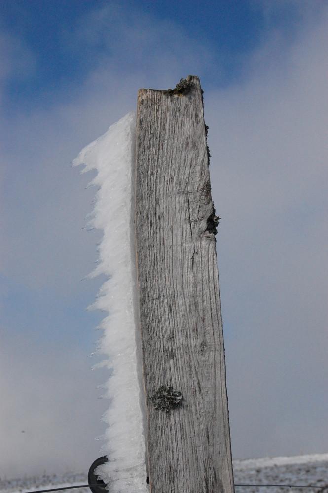 prémices d'hiver