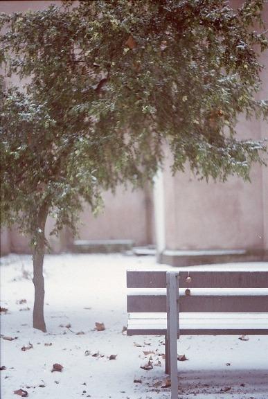 Premiere neige