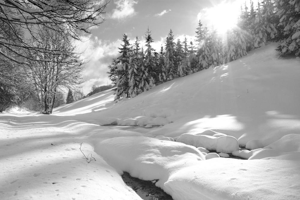 Première neige hiver 2007/2008