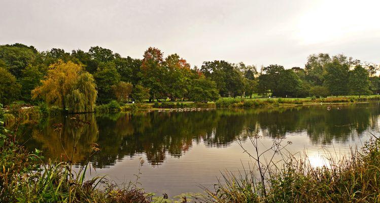 Premières heures automnales sur le lac.....