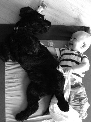 Premières photos de mon fils Hugo et son chien Mambo