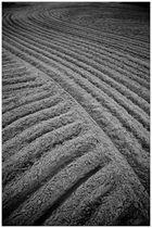 Prerow, Sandstrukturen.