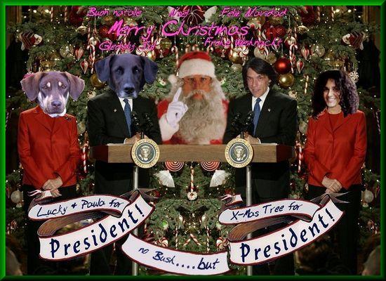 president-2