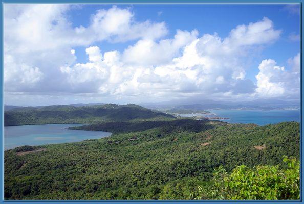 Presqu'ile de La Caravelle en Martinique