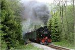 Preßnitztalbahn - heute