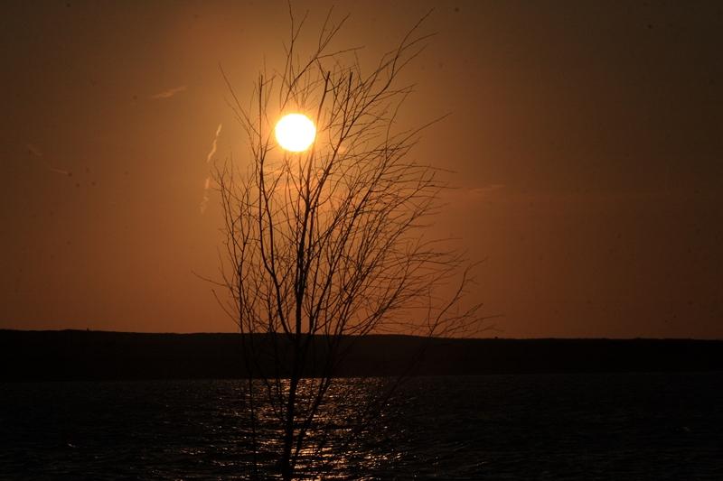 Priggen in der Morgensonne