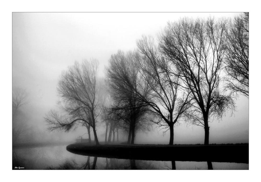 Prima nebbia