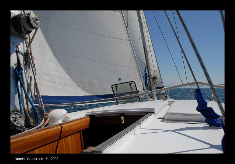 Primavera a vela nel golfo