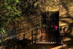 Primavera en Granada