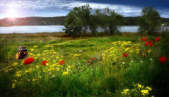 primavera en lagunas de Ruidera
