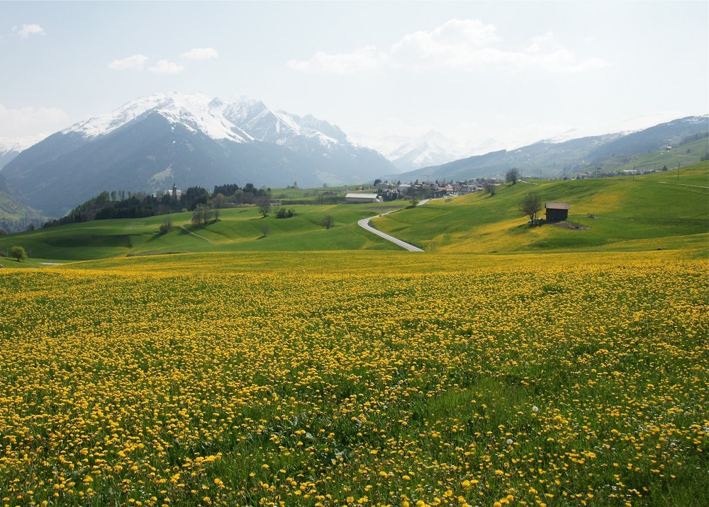 Primavera en Val Lumnezia