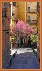 Primavera nei vicoli di Napoli