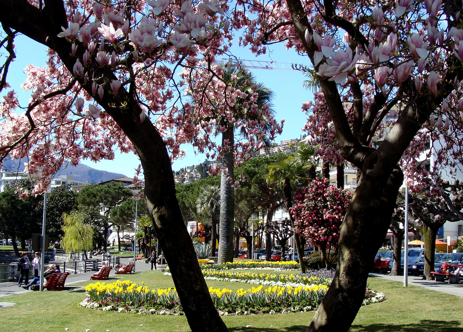 Printemps au / Primavera en / Frühling im = Tessin...10