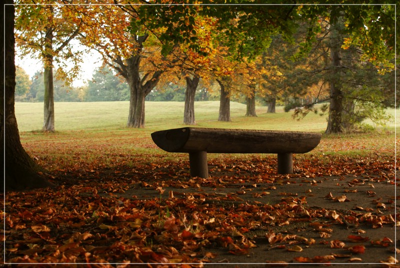 Prinzenpark Braunschweig