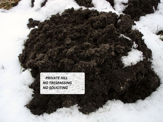 Private Hill - No Trespassing, Maulwurfhügel - Betreten Verboten