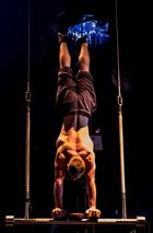 Probe im Cirque Bouffon